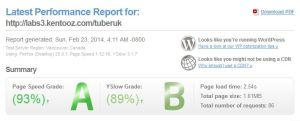 pagespeed-tuberuk