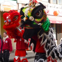 Photo of Lion Dances at Boston's Chinese New Year Celebration in Chinatown