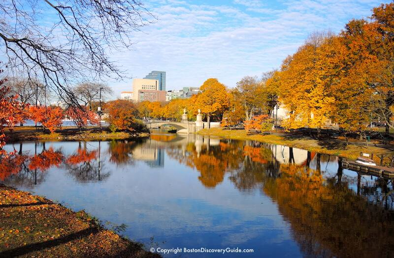 Boston Tree Lighting