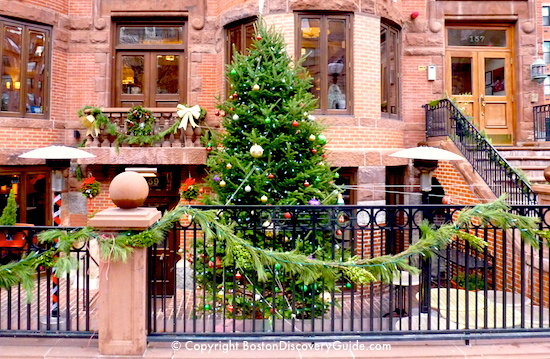Boston Christmas Tree 2016