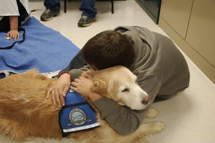 Photo via Lutheran Church Charities K-9 Comfort Dogs.