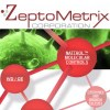 Boston Web Designers launches ecommerce website for Zeptmetrix