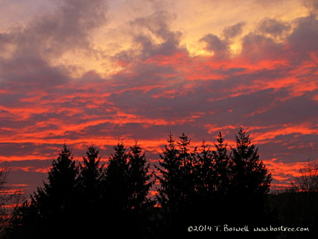 IMG_3254 sunset 3