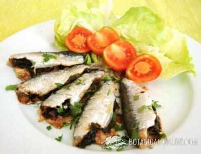 sardinas