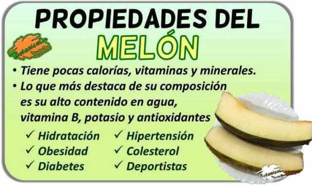 Propiedades alimentarias de los melones – Botanical-online
