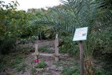 Βοτανικό Πάρκο- Κήποι Κρήτης: Χώρος χαλάρωσης και ηρεμίας