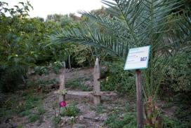 Botanical Park-Gardens of Crete- A perfect place for Relaxation