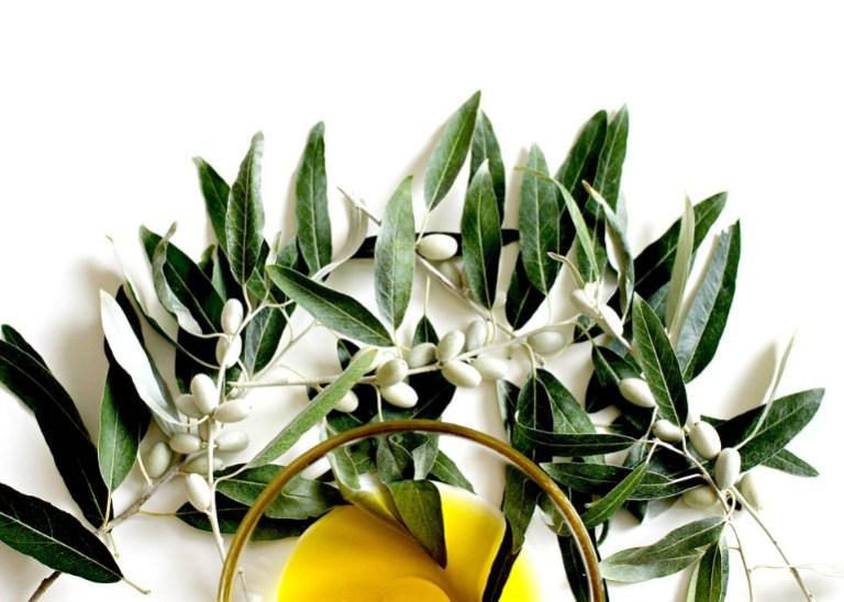 Olivenblatter