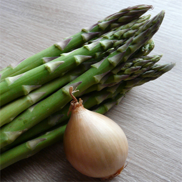 Abundant retrotransposons in the onion and asparagus genomes