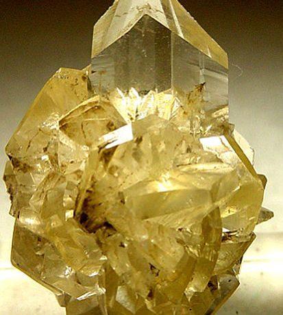 Golden gypsum crystals
