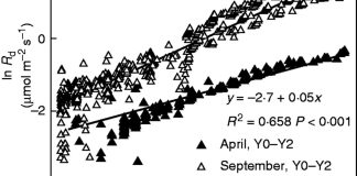 Temperature response of foliar daytime respiration rates (Rd) in Y0–Y2 needle cohorts during April and September 2013.