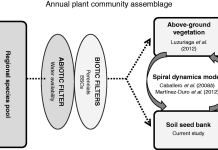 Factors driving species assemblage in Mediterranean soil seed banks