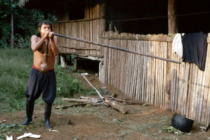 Achuar with a blowpipe in the Ecuadorian Amazon.