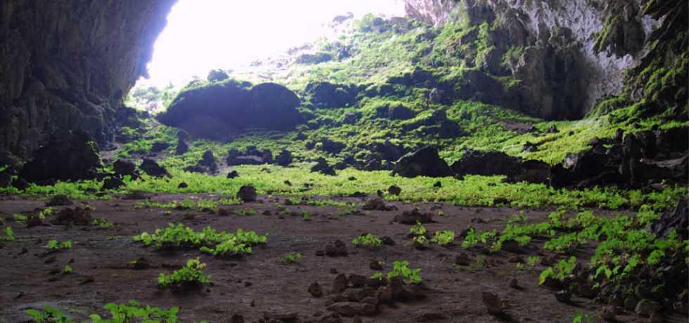 Yangzi cave, Guangxi, China.
