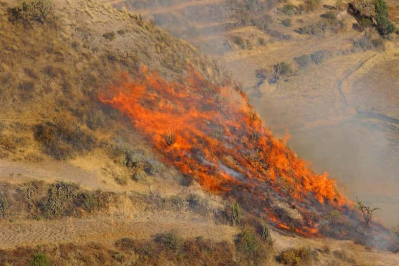 A wildfire spreading over a hillside