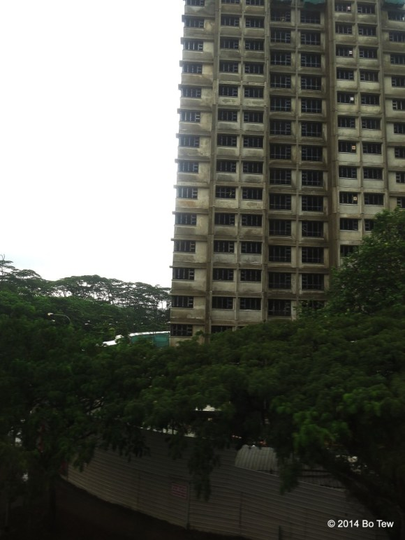 I can't fit the high-rising HDB flats (apartments) into my frame. Singapore.