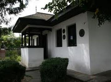 casa nicolae iorga botosani