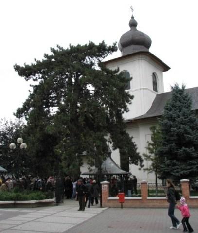 Biserica Cuv. Parascheva Botosani