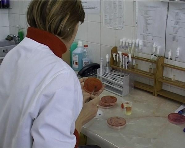 laborator judetean analize medicale