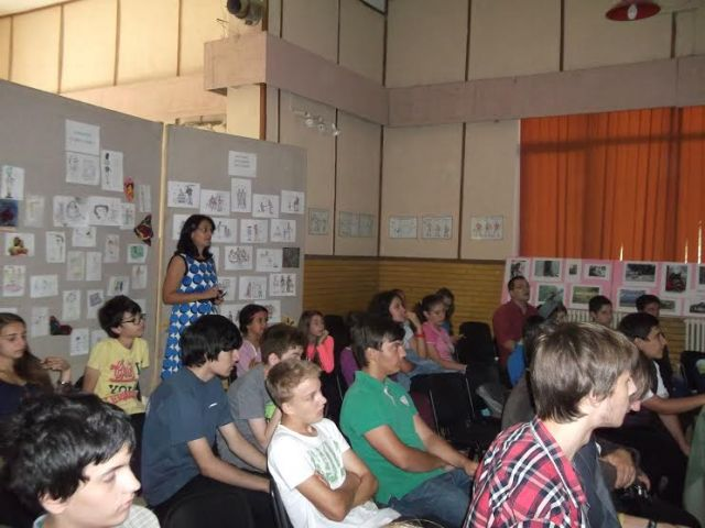 proiect IT Botosani