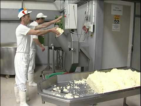 fabrica de lactate- lapte
