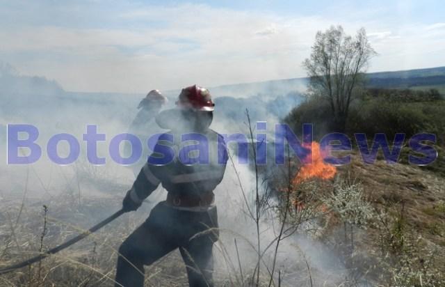 incendiu vegetatie la Botosani