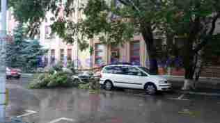 masini avariate de copaci rupti botosani