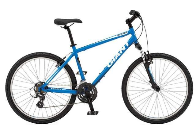 bicicleta, stiri, botosani