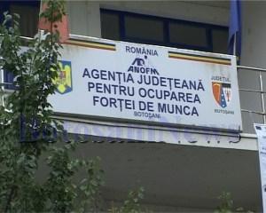 AJOFM Botosani sediu (2)