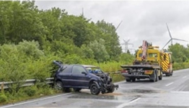accident-germania- botosanean mort