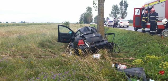 masina in copac, stiri, accident (1)