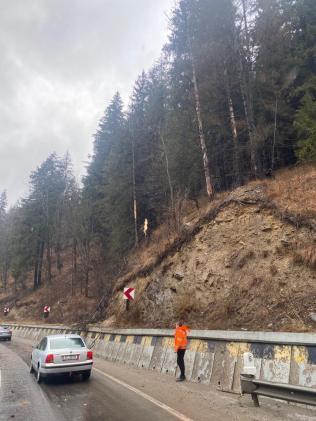 copac cazut peste masina, stiri (1)