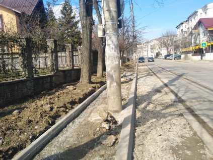 trotuare cu stalpi pe mijloc la Botosani (5)
