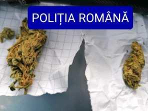 politie droguri botosani