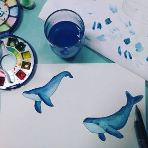 study-whales