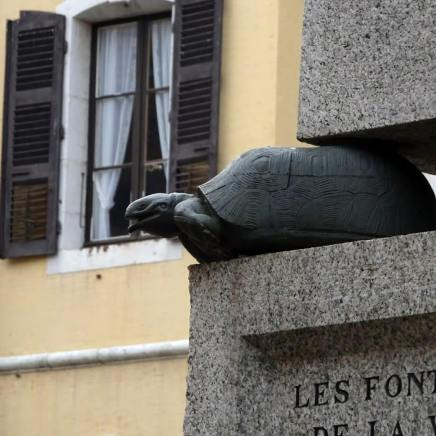 Tortue - Annecy