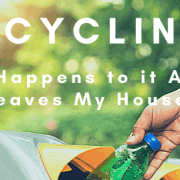 Header image-title-Recycling: What happens to it after it leaves my house?
