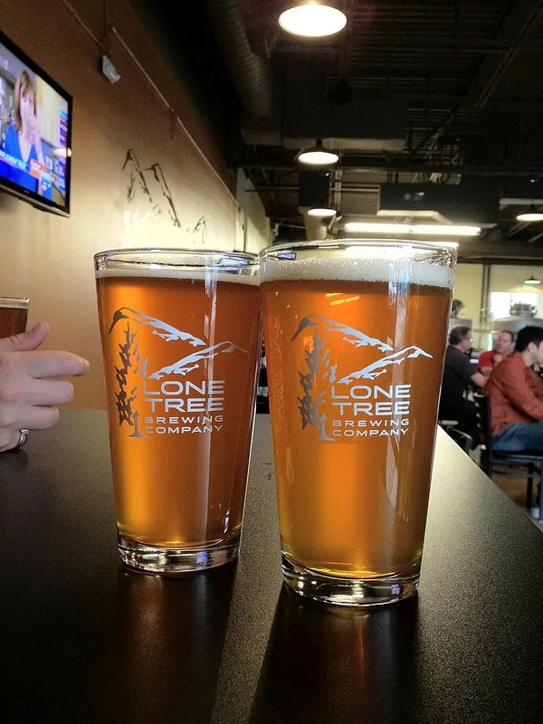 The Hoptree IPA (L) and Puddle Jumper Pale Ale (R)