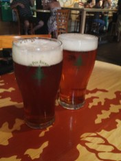 A couple of Twisted Pine pints