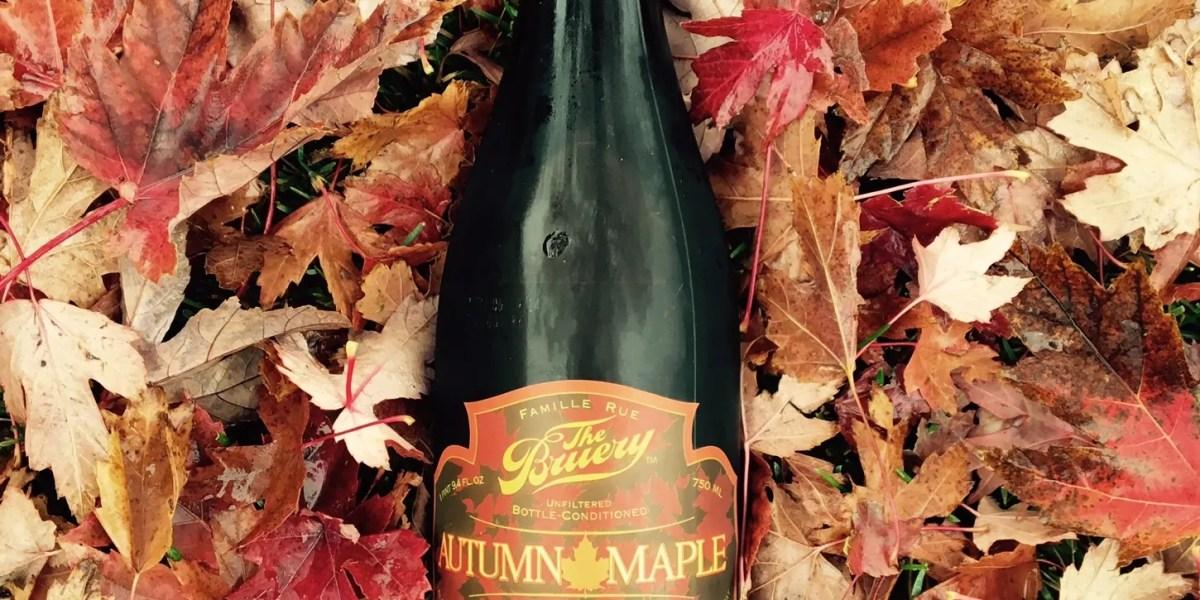 An Autumn Maple, under our own autumn maple (tree)   BottleMakesThree.com