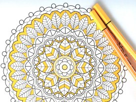 Adult Coloring Books — A Creative Way To Unwind! – The Bott ...
