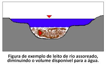 Figura de exemplo de leito de rio assoreado