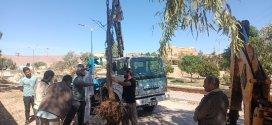حملة نظافة واعادة غرس الاشجار من طرف شباب حي لومامين