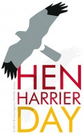 Amar Hen Harrier Day image