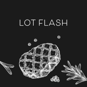 Lot flash boeuf poulet