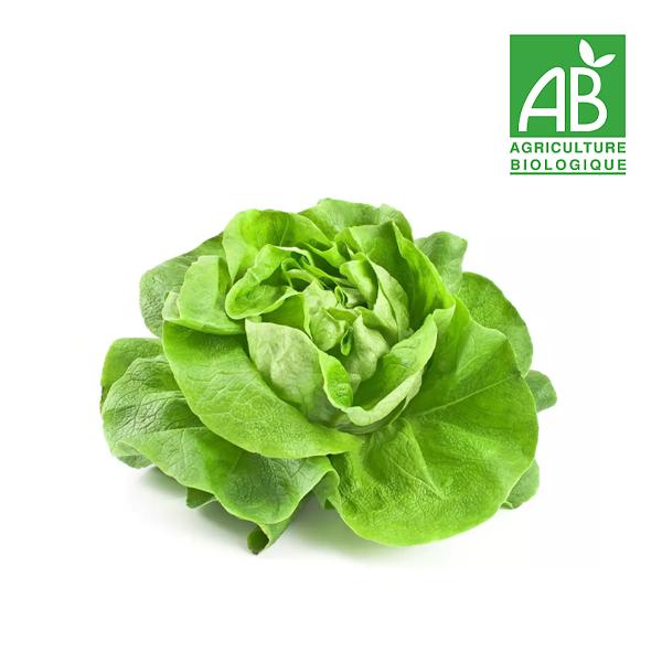 Salade bio poitiers