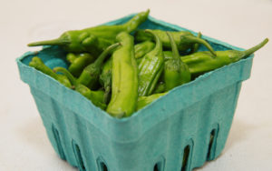 Shishito peppers from Deep Nutrition Farm