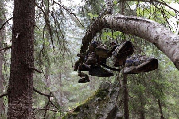 Magic Wood Sommer 2015 (309)