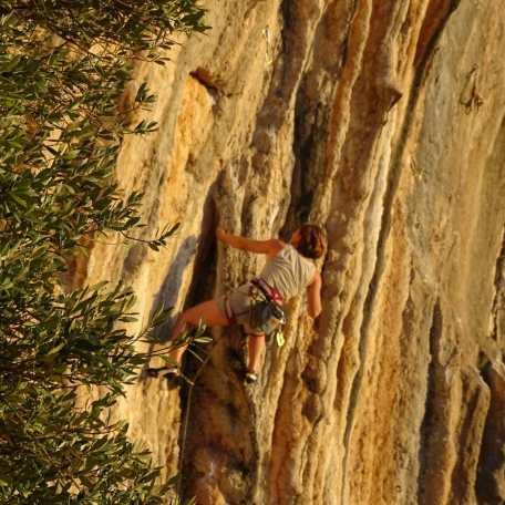 2018-Klettern-auf-Mallorca-Boulderwelt-Athletin-Freddy-Petri-Weihnachten-Silvester (5)