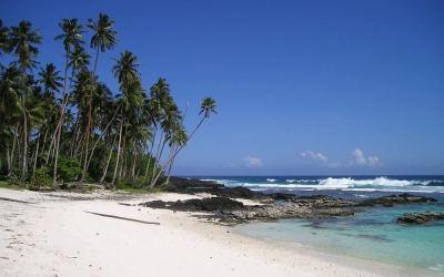 The Minimum Wage:  An Island Tale